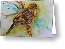 Saltmarsh Sparrow Greeting Card by Beverley Harper Tinsley