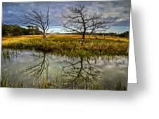 Salty Marsh At Jekyll Island Greeting Card by Debra and Dave Vanderlaan
