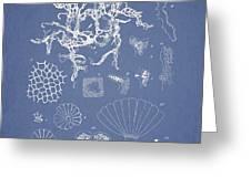 Salwater Algae Greeting Card by Aged Pixel