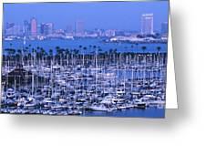 San Diego Twilight Greeting Card by Sandra Bronstein