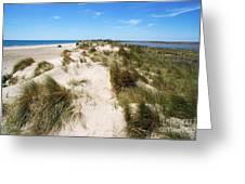 Sand dunes separation Greeting Card by Sami Sarkis