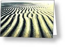 Sand Groove Greeting Card by Graham Foulkes