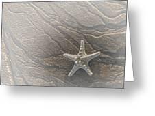 Sand Prints And Starfish II Greeting Card by Susan Candelario