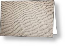 Sand ripples natural abstract Greeting Card by Elena Elisseeva