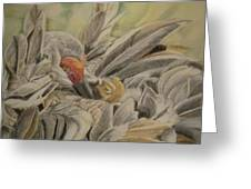 Sandhill Crane And Chick Greeting Card by Teresa Smith