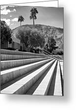 Sandpiper Stairs Bw Palm Desert Greeting Card by William Dey