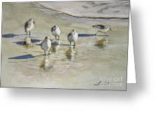 Sandpipers 2 Watercolor 5-13-12 Julianne Felton Greeting Card by Julianne Felton