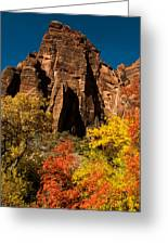 Sandstone Cliffs And Fall Colors Zion National Park Greeting Card by Robert Ford