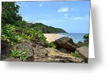 Sandy Beach At Rincon Pr Greeting Card by Tim Treadwell