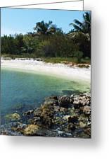 Sanibel Cove Greeting Card by Anna Villarreal Garbis