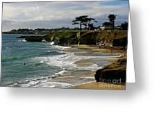 Santa Cruz Beach Greeting Card by Carol Groenen