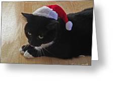 Santa Kitty Greeting Card by Cheryl Young