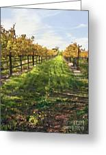 Santa Maria Vineyard Greeting Card by Sharon Foster