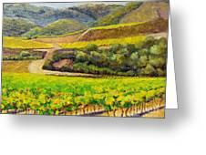 Santa Rita Color Greeting Card by Terry Taylor