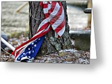 Save the Flag Greeting Card by Susan Leggett