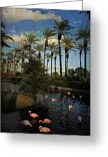 Savoring The Last Light Greeting Card by Laurie Search