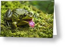 Say Ahhhh Greeting Card by Christina Rollo