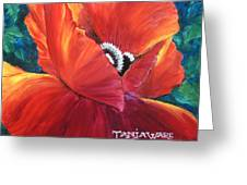 Scarlet Poppy Greeting Card by Tanja Ware