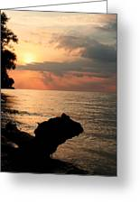 Scenic Beach Driftwood Sunset Greeting Card by Heather Allen