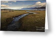 Scenic View Of Lake Viedma Greeting Card by John Shaw