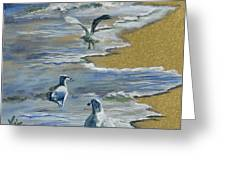 Sea Gulls With Gold Leaf By Vic Mastis Greeting Card by Vic  Mastis