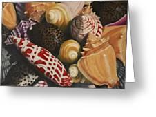 Sea Shells Greeting Card by Sid Ball