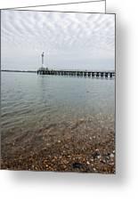 Sea Shore Greeting Card by Svetlana Sewell
