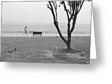 Sea-side Walk Greeting Card by Ilker Goksen