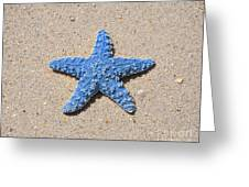 Sea Star - Light Blue Greeting Card by Al Powell Photography USA