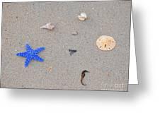 Sea Swag - Dark Blue Greeting Card by Al Powell Photography USA
