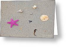 Sea Swag - Pink Greeting Card by Al Powell Photography USA