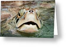 Sea Turtle Poking Head Out Of Water Greeting Card by Dan Friend