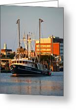 Seafox At Sunset Greeting Card by Veronica Vandenburg