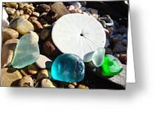 Seaglass Art Prints Rock Garden Sand Dollar Greeting Card by Baslee Troutman