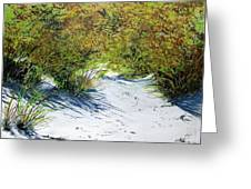 Seagrass Greeting Card by Ken Ahlering