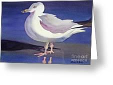 Seagull Greeting Card by Shirin Shahram Badie