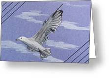 Seagull Greeting Card by Susan Turner