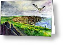 Seagulls At The Cliffs Of Moher Greeting Card by John D Benson