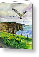 Seagulls At The Cliffs Of Moher Portrait Greeting Card by John D Benson