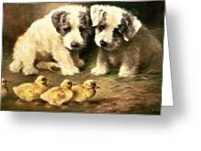 Sealyham Puppies And Ducklings Greeting Card by Lilian Cheviot