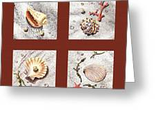 Seashell Collection Iv Greeting Card by Irina Sztukowski