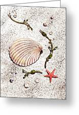Seashell Sea Star And Pearls On The Beach Greeting Card by Irina Sztukowski