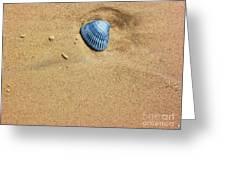 Seashell Greeting Card by Venus