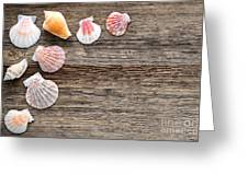 Seashells On Wood Greeting Card by Olivier Le Queinec