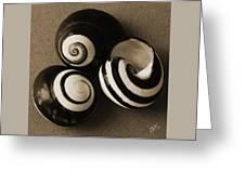 Seashells Spectacular No 27 Greeting Card by Ben and Raisa Gertsberg