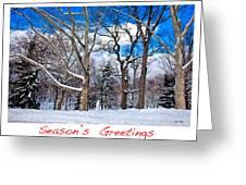 Season's Greetings Greeting Card by Madeline Ellis