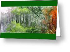 Seasons Of The Aspen Greeting Card by Carol Cavalaris