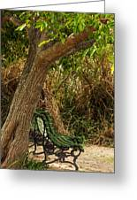 Secluded Park Benches Greeting Card by Jess Kraft