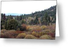 Seeley Lake Greeting Card by Larry Stolle