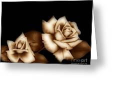 Sepia Roses Greeting Card by Cheryl Young